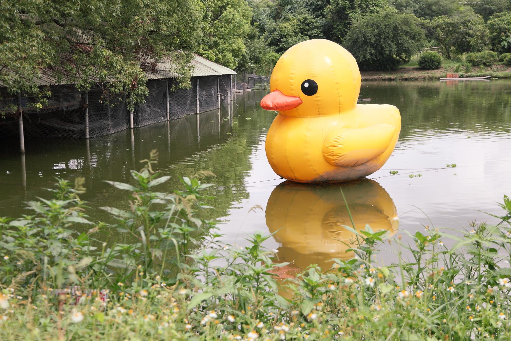 養鴨人家 Tainan Duck Farm